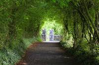 Path to Bunratty Castle