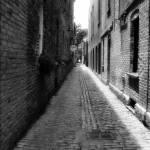 """Magnolias Alley/ Savannah"" by chuckbillingsley"