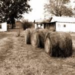 """After the Harvest"" by chuckbillingsley"