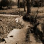 """Creek"" by chuckbillingsley"