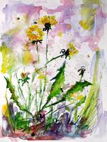 Spring Has Arrived Dandelions & Bees Watercolor by