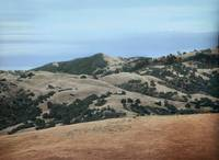 View North from Top of Mission Peak, Fremont, CA by WorldWide Archive