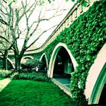 """Jardin Vert"" by jwilsonholmes"