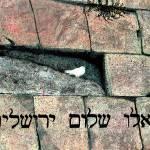 """""""Pray for Peace"""" by Dubhthaigh"""