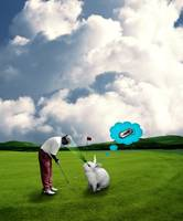 Rabbits can not concentrate on golf