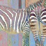 """Zebras in Pastels"" by AngelaStanton"