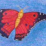 """""""Kamehameha Butterfly"""" by WayneStierArt"""