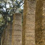 """Coquina Columns"" by LISA0823"