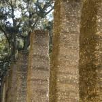 """""""Coquina Columns"""" by LISA0823"""