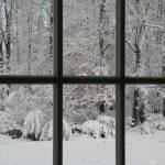 """Window View"" by LISA0823"