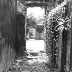 """""""Doorways"""" by LISA0823"""