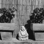 """Meditation"" by Framtonm"