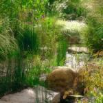 """""""Erickson Water Garden"""" by LindaYvonne"""