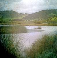 Carmel River Estuary