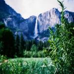 """Yosemite Falls"" by thedalailomo"