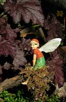 Fairies in the Garden