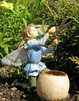There Are Fairies In The Garden