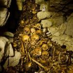 """Paris Catacombs: Cimetiere Montrouge Skulls #1"" by undercity"