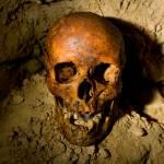 """Paris Catacombs: Cimetiere Montrouge Skulls #3"" by undercity"