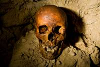 Paris Catacombs: Cimetiere Montrouge Skulls #3