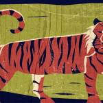 """Tiger"" by BenjaminBay"