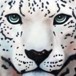 """Snow Leopard"" by brittanyhawkins"