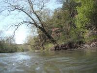 Niangua River View