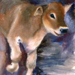 """Brown Swiss Calf aceo"" by bmthour"