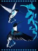 Two Blue Hummingbirds