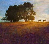 afternoon of the fawns