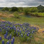 """Texas Hill Country Spring 148"" by PaulHuchton"
