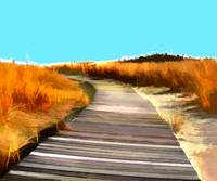 Abstract Beach Dune Boardwalk