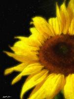 Sunflower 5 Watercolor