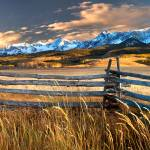 """Fence line"" by pbk"