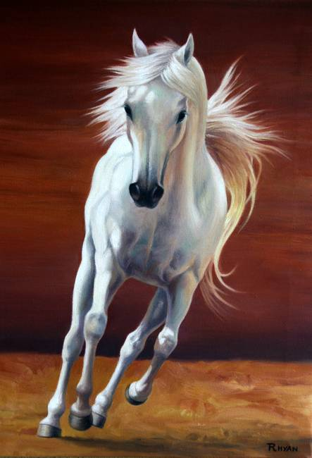 Galloping white horse - photo#24