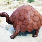 """""""Turtle Sculpture"""" by jupiterqueen"""