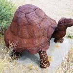 """""""Turtle - Sculpture"""" by jupiterqueen"""