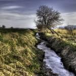 """irregular irrigation"" by Ryanocerous"