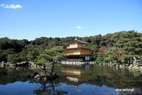 - The Golden Pavilion -