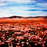 """Antelope Valley Poppy Fields"" by johncorney"