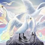 """Seven Swans"" by FelipeBermudezPrints"