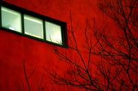A window in red