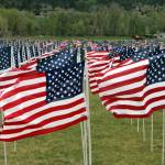 """Field Of Flags"" by imagesbyabel"