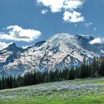 """Summer Mountain Meadow  #090724s30c1g"" by anselprice"