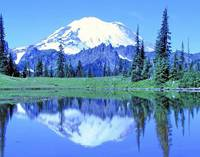 Mt. Rainier Reflection #05d048 c1114g