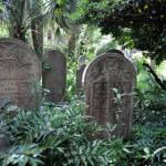 """Old Unitarian Graveyard in Charleston, SC"" by smayer"