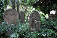 Old Unitarian Graveyard in Charleston, SC