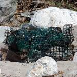 """""""Storm weathered lobster trap"""" by EssentialBriezzePhoto"""