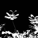 """Floral 10BWa Black and White Spring Landscape"" by Ricardos"