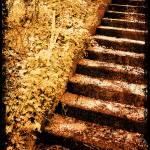 """""""Monastery steps"""" by klmaponte"""